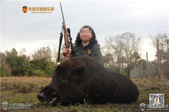 最厉害的狩猎动物