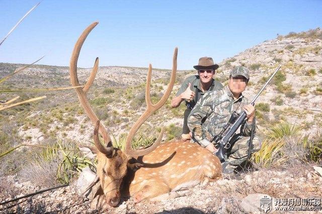 狩猎美国2020