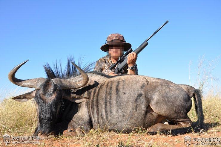 南非狩猎之旅