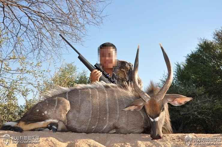 国外狩猎团