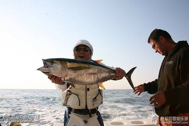 黄鳍金枪鱼海钓