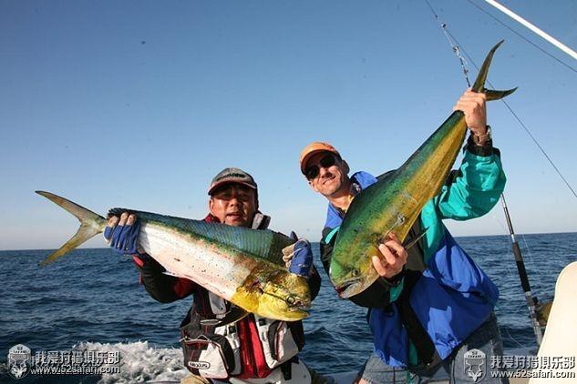 墨西哥鬼头刀钓鱼