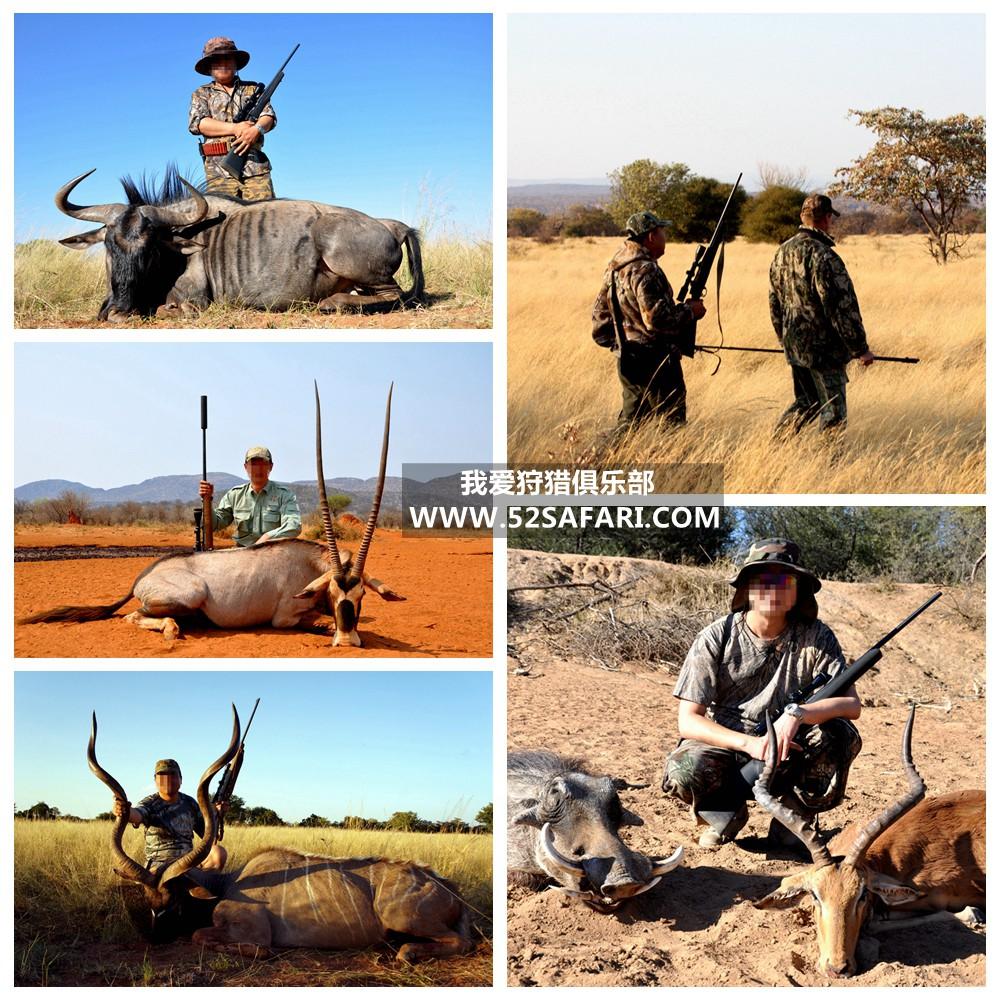 南非狩猎定制狩猎之旅