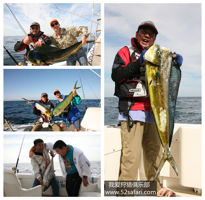 墨西哥钓鱼团