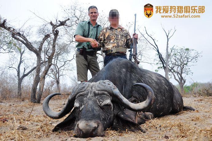 非洲野牛狩猎 坦桑尼亚野牛狩猎 国际狩猎