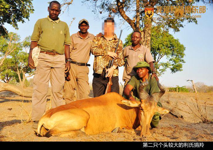 狷羚狩猎 坦桑尼亚猎 羚羊狩猎