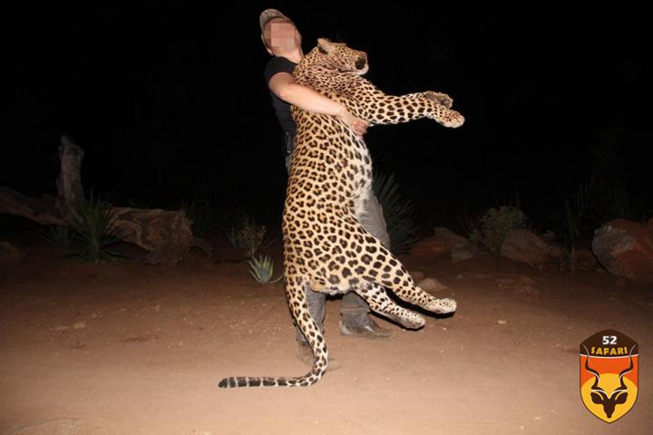 非洲豹狩猎费