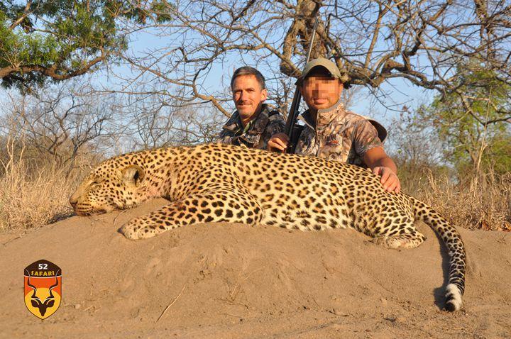 非洲野生动物现状