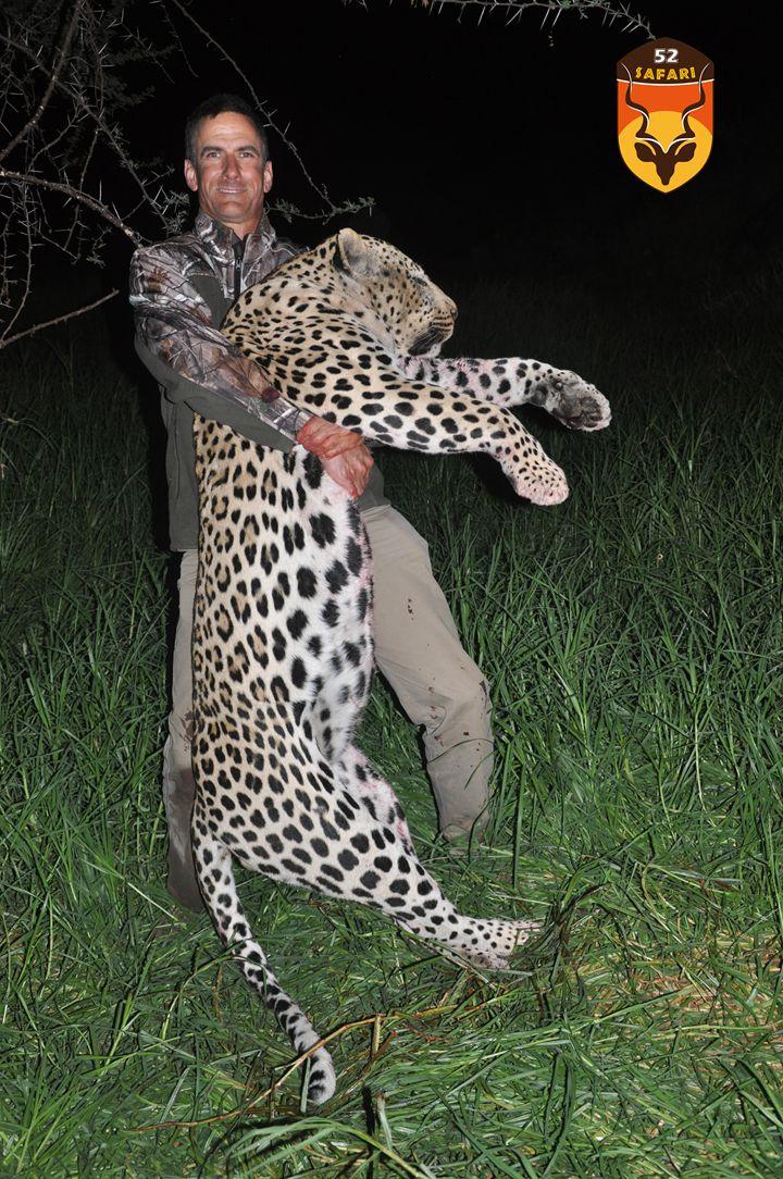 纳米比亚狩猎 花豹狩猎团 巨大花豹