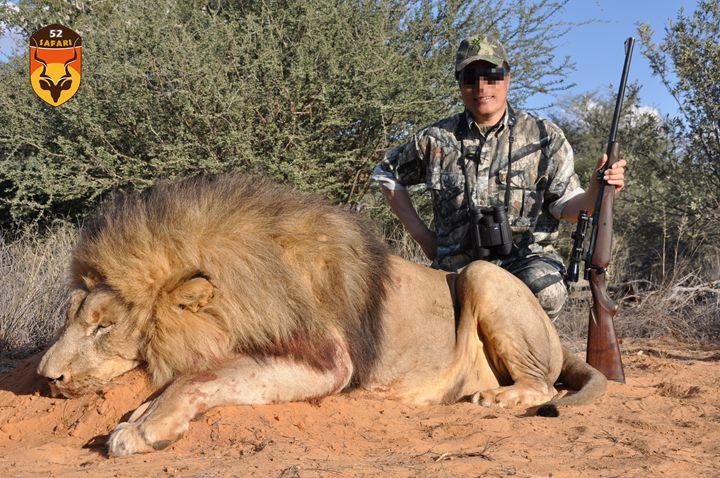 狮子狩猎团费