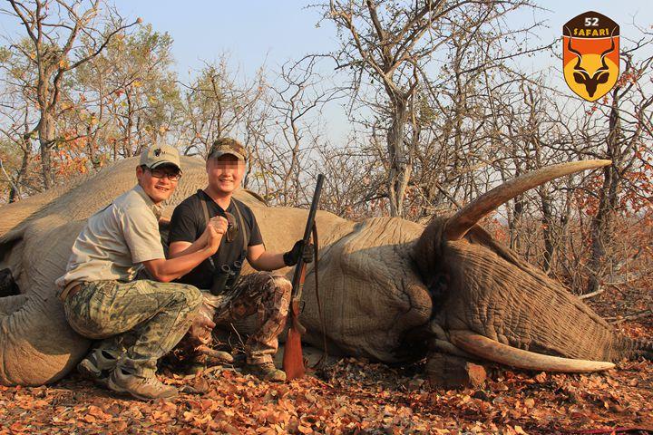 中国人非洲狩猎