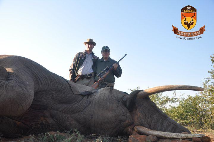 大象狩猎费