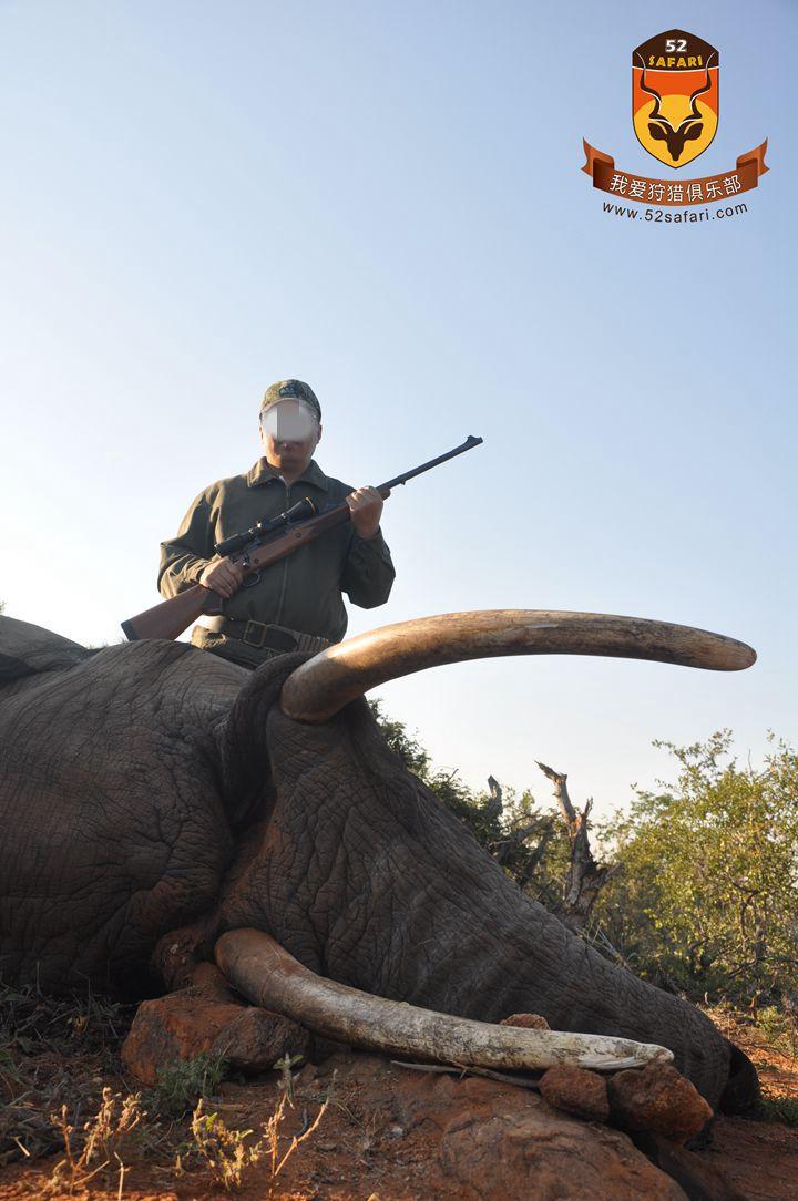 国际狩猎费