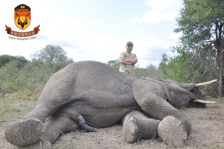 坦桑尼亚狩猎团