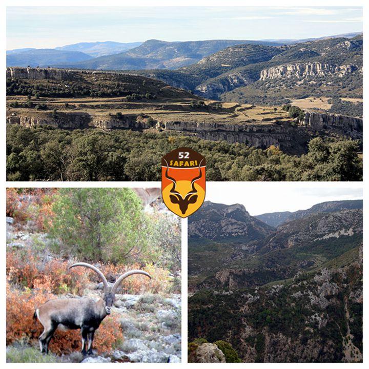 西班牙狩猎区