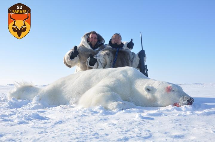 北极熊狩猎团