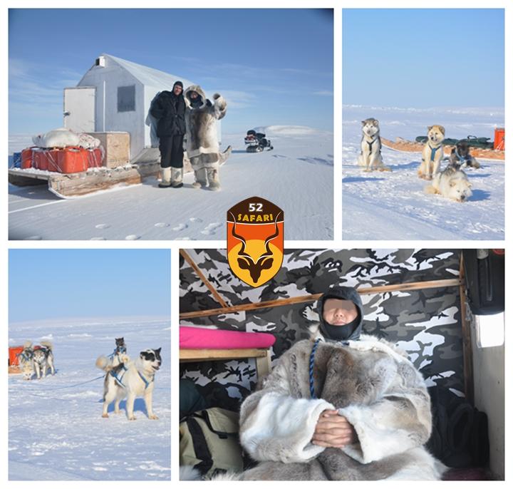 北极狩猎装备
