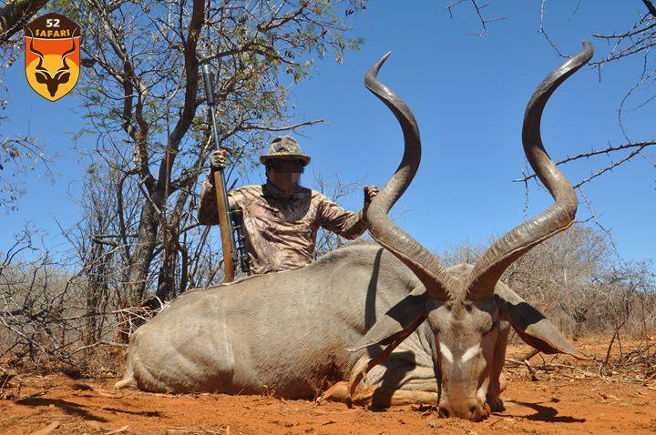 纳米比亚狩猎 狩猎 国外狩猎 国际狩猎 非洲狩猎 纳米比亚 大捻角羚