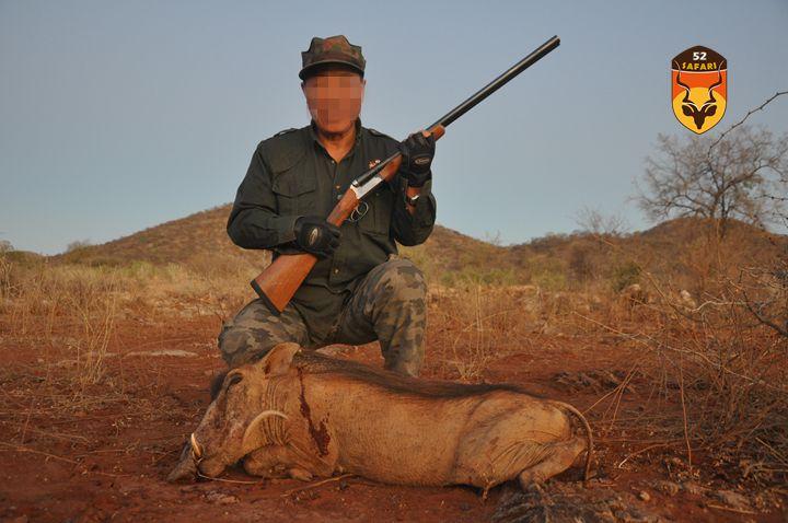纳米比亚狩猎 狩猎 国外狩猎 国际狩猎 非洲狩猎 纳米比亚 纳米比亚打猎 疣猪 打猎疣猪 狩猎疣猪 非洲疣猪 打猎