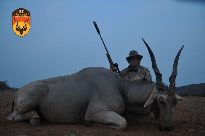 纳米比亚狩猎 狩猎 国外狩猎 国际狩猎 非洲狩猎 纳米比亚 大羚羊 大羚羊狩猎 直角羚 非洲直角羚 纳米比亚打猎 打猎