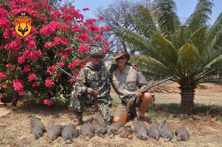 纳米比亚狩猎 狩猎 国外狩猎 国际狩猎 非洲狩猎 纳米比亚 纳米比亚打猎 非洲打鸟 打猎