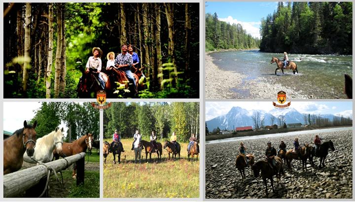 加拿大骑马钓鱼