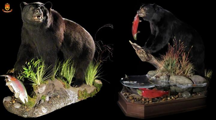 北极狩猎 国外狩猎 北美狩猎 美国狩猎 加拿大狩猎 非洲狩猎 南非狩猎 非洲打猎 北美打猎 国外打猎 熊打猎 熊狩猎 国外海钓   狩猎俱乐部 狩猎团 打猎 狩猎