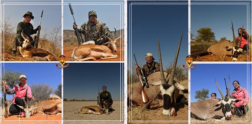 非洲狩猎 狩猎 非洲打猎 纳米比亚狩猎 纳米比亚打猎 国外狩猎 国外打猎 世界狩猎 世界打猎 直角羚 跳羚狩猎 直角羚狩猎