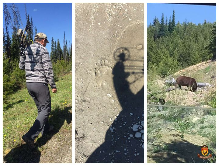 北美狩猎 加拿大狩猎 美国狩猎 灰熊狩猎 黑熊狩猎 棕熊狩猎 驼鹿狩猎 熊狩猎 熊打猎 国外狩猎 国外打猎 国际狩猎 国际打猎 狩猎团 狩猎俱乐部 巴厘岛海钓