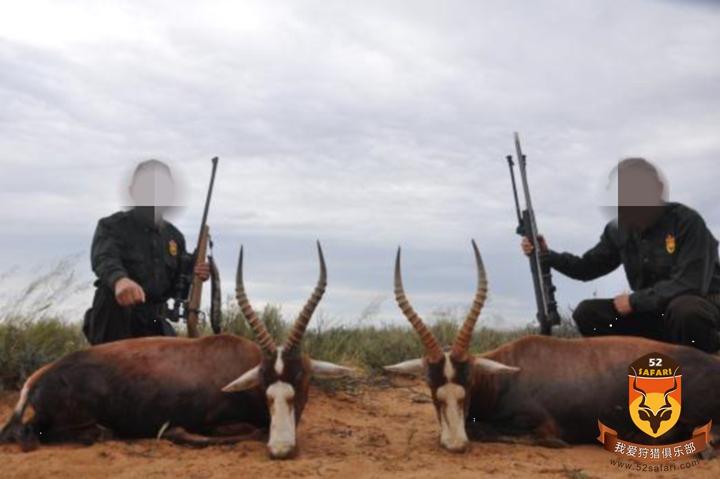 纳米比亚打猎 非洲海钓 定制狩猎 定制旅游 高端旅游  犀牛狩猎 俄罗斯狩猎 灰狼狩猎 灰狼 东欧灰狼 北美狩猎  加拿大狩猎 美国狩猎 灰熊狩猎 黑熊狩猎 棕熊狩猎 驼鹿狩猎 熊狩猎 俄罗斯棕熊 俄罗斯熊 熊打猎 国外狩猎 国外打猎 国际狩猎 国际打猎 狩猎团 狩猎俱乐部 南非狩猎 非洲狩猎 纳米比亚狩猎 非洲打猎 南非打猎 纳米比亚打猎 定制狩猎 定制旅游 高端旅游 花豹狩猎 豹子狩猎 狮子狩猎 犀牛狩猎 俄罗斯狩猎 灰狼狩猎 灰狼 俄罗斯 驼鹿狩猎 狩猎 俄罗斯驼鹿狩猎 中国狩猎公司 狩猎 打猎 国外狩猎 国外打猎 驼鹿打猎 驼鹿 勘察加驼鹿 勘察加驼鹿狩猎 勘察加狩猎 勘察加棕熊狩猎 勘察加棕熊驼鹿狩猎 棕熊驼鹿狩猎 俄罗斯勘察加狩猎 灰狼狩猎 灰狼 俄罗斯打狼 狼 猎狼  灰熊狩猎 黑熊狩猎 棕熊狩猎 驼鹿狩猎 熊狩猎 熊打猎 国外狩猎 国外打猎 国际狩猎 国际打猎 狩猎团 狩猎俱乐部 南非狩猎 非洲狩猎  非洲打猎