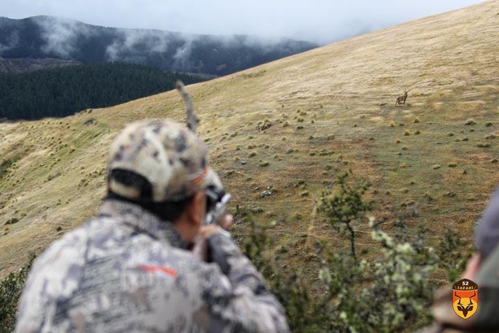 北美狩猎  加拿大狩猎 美国狩猎 灰熊狩猎 黑熊狩猎 棕熊狩猎 驼鹿狩猎 熊狩猎 熊打猎 国外狩猎 国外打猎 国际狩猎 国际打猎 狩猎团 狩猎俱乐部 南非狩猎 非洲狩猎 纳米比亚狩猎 非洲打猎 南非打猎 纳米比亚打猎 非洲海钓 非洲钓鱼 纳米比亚海钓 纳米比亚钓鱼 南非钓鱼 南非海钓 定制狩猎 定制旅游 高端旅游 花豹狩猎 豹子狩猎 狮子狩猎 犀牛狩猎 俄罗斯狩猎 新西兰狩猎 新西兰海钓