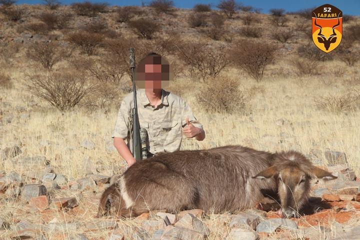 经济非洲狩猎团