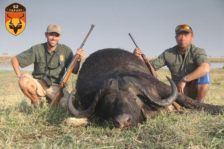 纳米比亚野牛狩猎