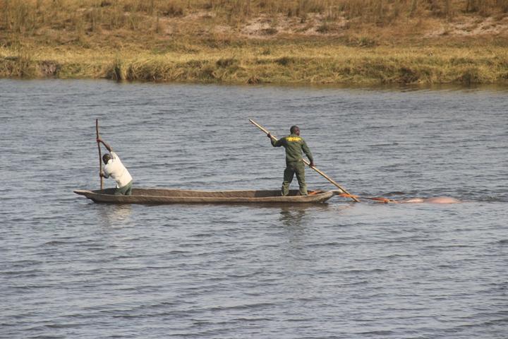河马狩猎团