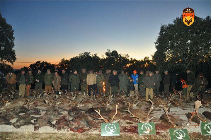 西班牙狩猎 西班牙围猎 中国人去西班牙狩猎