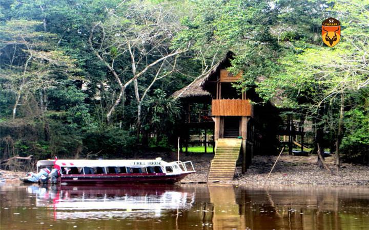 亚马逊河钓