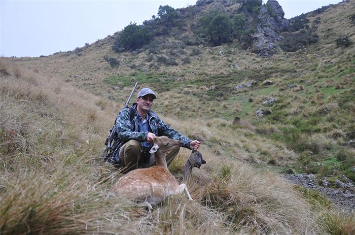 新西兰非战利品狩猎