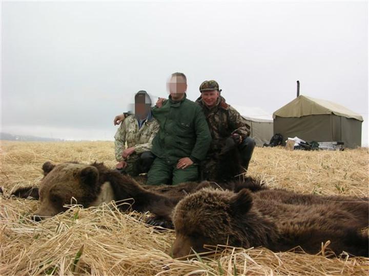 马加丹棕熊狩猎