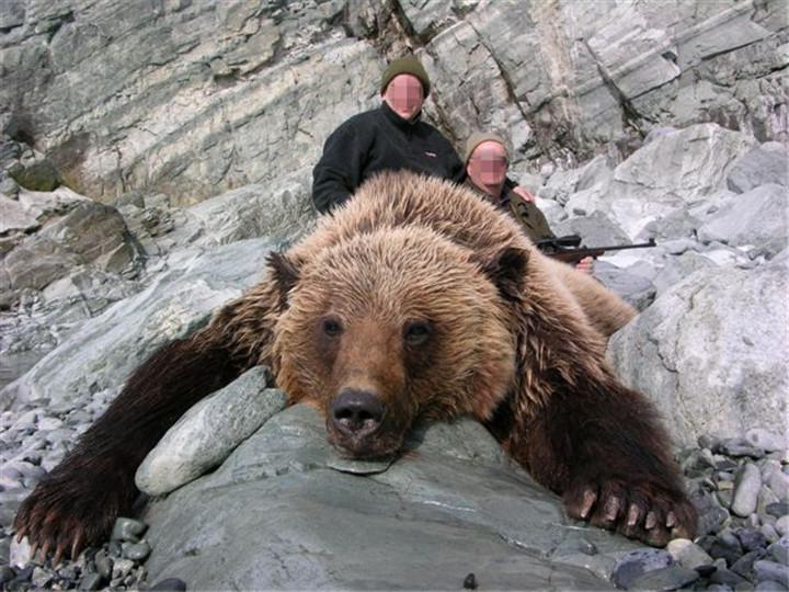 勘察加棕熊狩猎