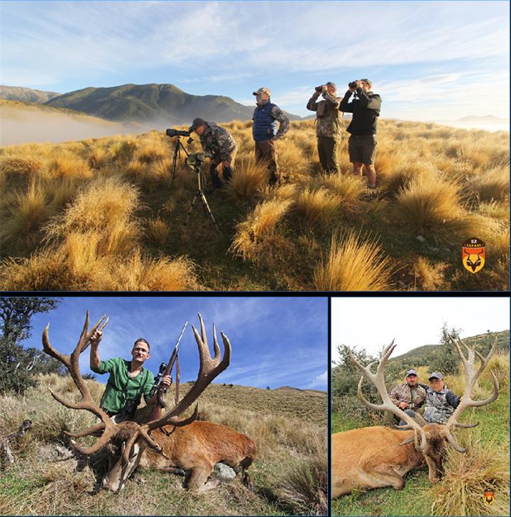 新西兰狩猎团