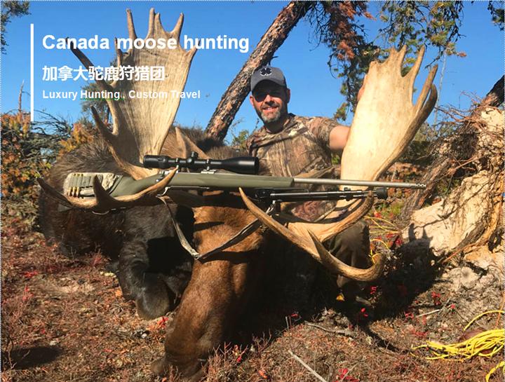 加拿大驼鹿狩猎团