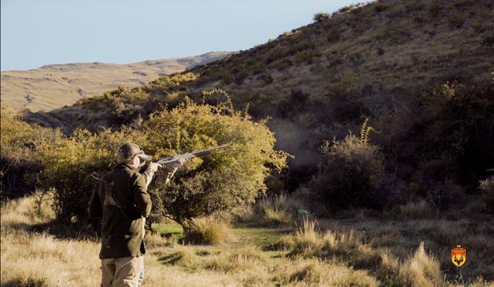 新西兰飞禽狩猎