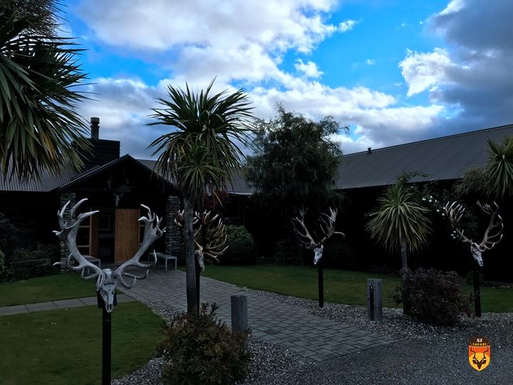 新西兰营地