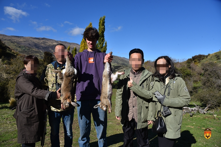 新西兰野兔狩猎