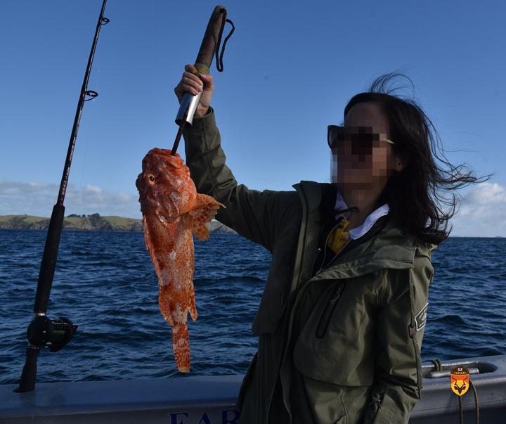 新西兰定制海钓团