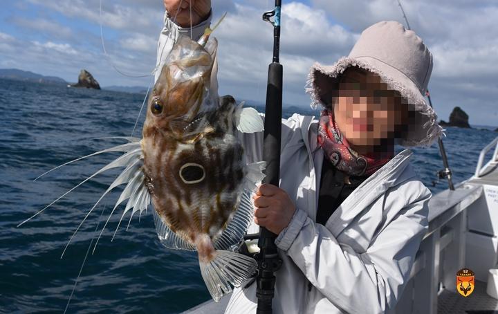 国际海鲂鱼