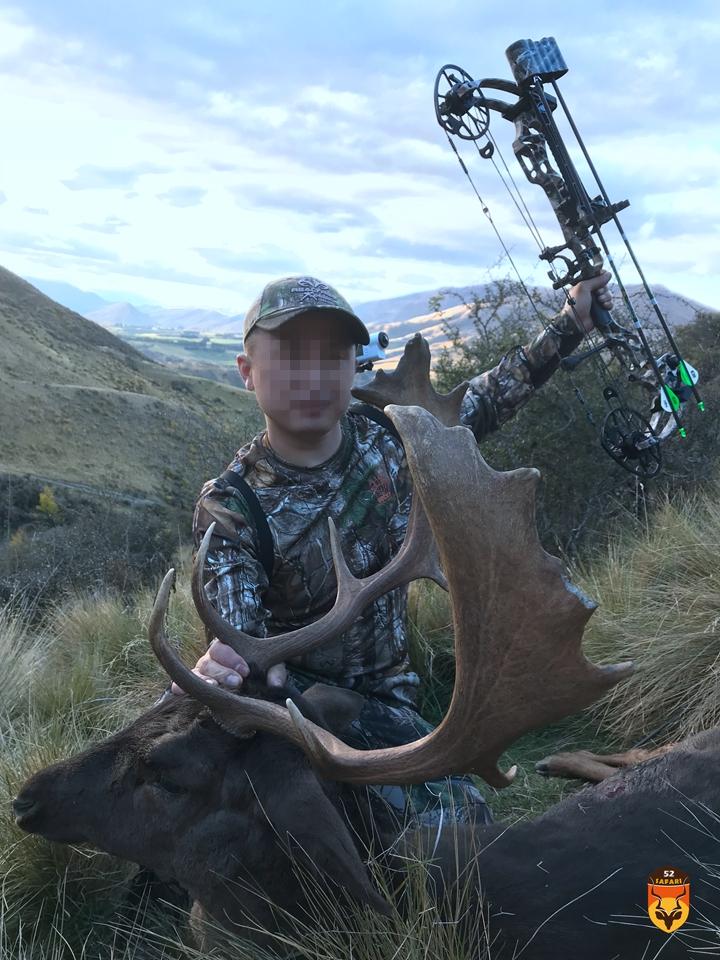 新西兰黇鹿狩猎