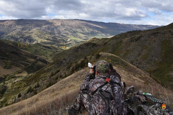 新西兰狩猎