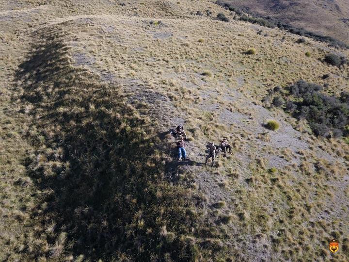 新西兰弓箭狩猎