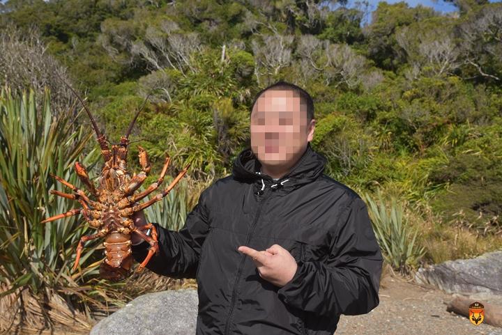 新西兰直升飞机旅游 新西兰抓龙虾